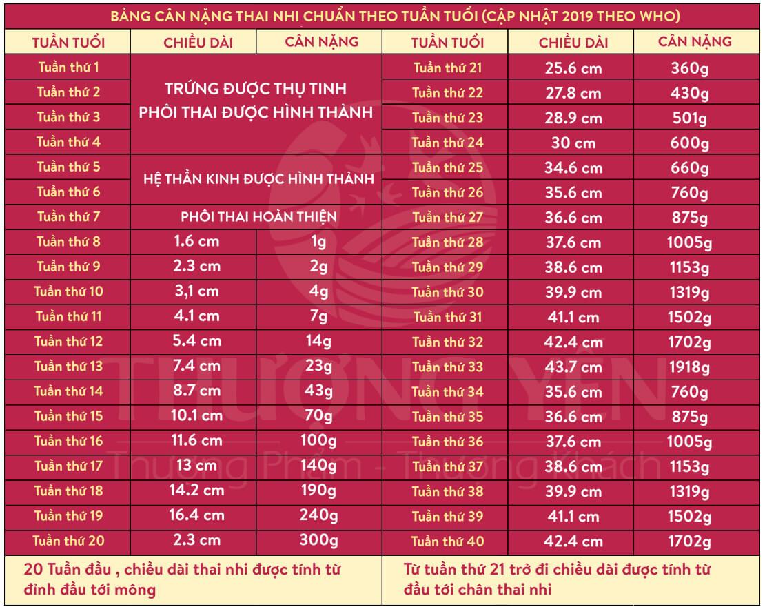 Bảng cân nặng thai nhi tiêu chuẩn